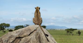 Visions de Tanzanie