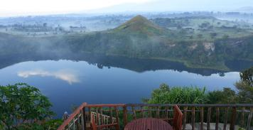 Rencontre avec les Gorilles en Ouganda